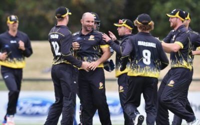From laughing stock to proven winners: how Wellington Firebirds became the country's best cricket team